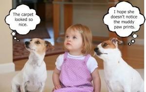 Kids & Pets